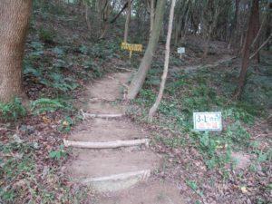 登り口After